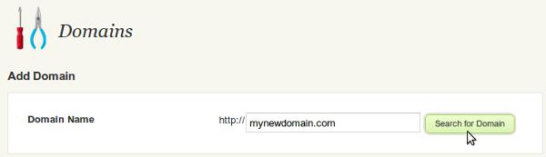 custom-domain-2